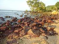 Mangue de Pedras