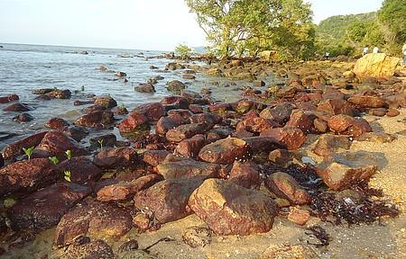 Mangue de Pedras faz parte do roteiro especial